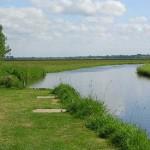 Chef-du-Pont, les marais du Merderet