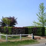 Estrées-la-Campagne, monument Worthington force