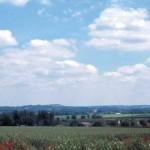 Tournai-sur-Dives, vue du champ de bataille