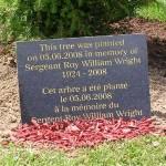 Merville-Franceville, arbres du souvenir Sergeant Wright