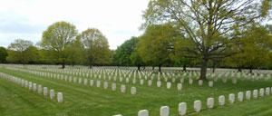 Champigny-Saint-André, cimetière lettrine