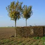 Lantheuil, vue sur le site de l'aérodrome B9