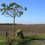 Martragny, stèle aérodrome B7