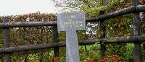 Espins, monument lettrine