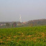 Fierville-Bray, vue sur la plaine