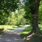 Hiesville, allée d'entrée du château de la Colombière